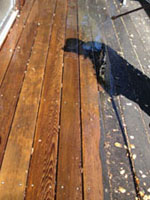 Photo: powerwashing a deck3